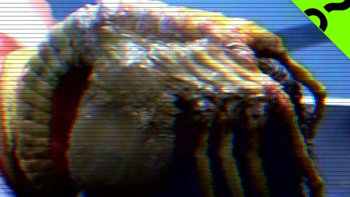 Monster Science Figures Out What That Creepy 'Alien' Facehugger Is