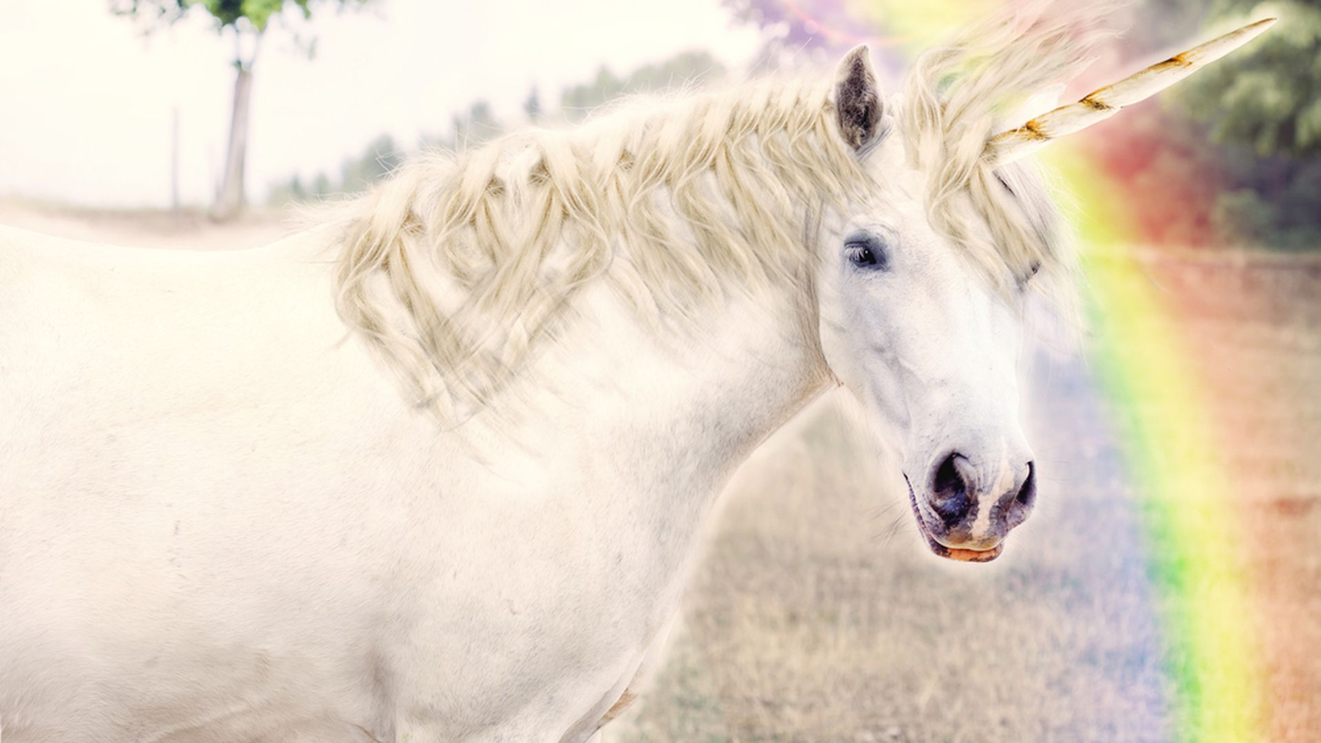 Howstuffworks: Which Mythical Creature Is Your Spirit Animal?