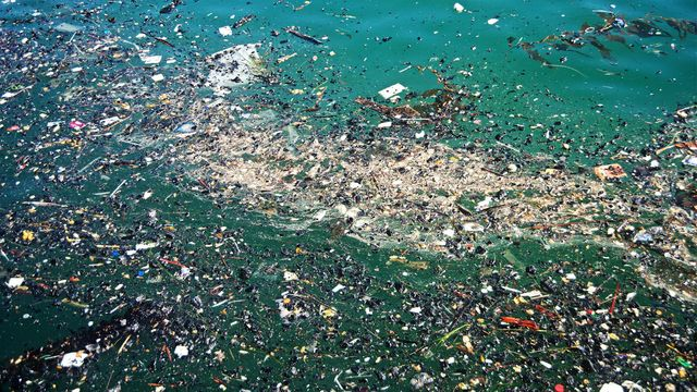 The Ultimate Great Pacific Garbage Patch Quiz Howstuffworks