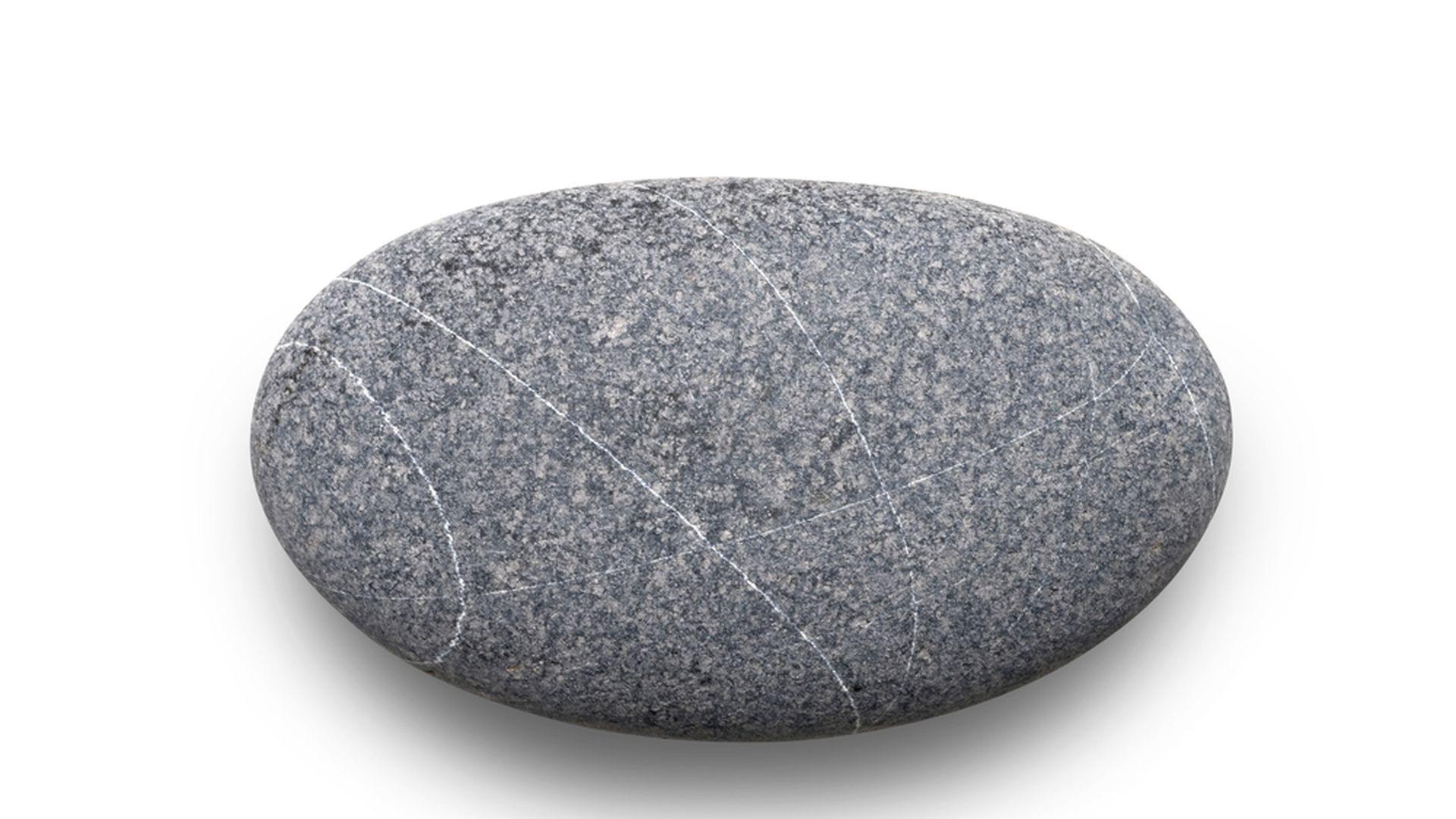 Zoo: What Should You Name Your Pet Rock?